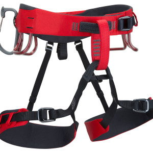 alpineharness